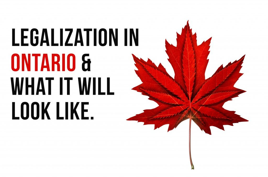What Ontarian's Need to Know Before Legalization